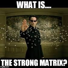 Project Management Meme - what is the strong matrix the armchair hr manager advice from
