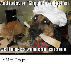 Make Doge Meme - and today on shepherdis kitchen well make a wonderful cat soup