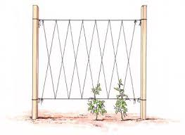 How To Make Trellis For Peas Staking Vegetables Twine 4x4 And Tower