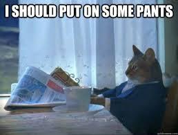 Meme Pants - cat pants meme best 5 supplements
