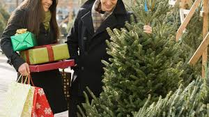 the do s and don ts of buying the tree abc news