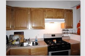 Best Kitchen Cabinets On A Budget Kitchen Amazing Frameless Kitchen Cabinets Frameless Cabinet