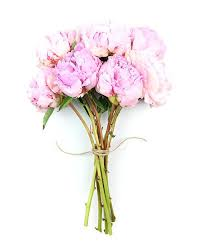 Flower Delivery Free Shipping Flower Haul Online Flower Delivery Free Shipping Peonies