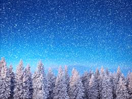 nature spruce winter snowflakes sky snow forests seasons