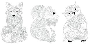 coloriages des animaux de la foret tropicale  ewenchiame