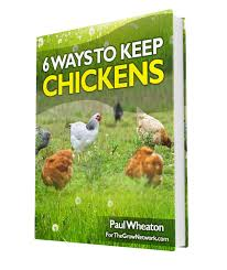 growing chicken feed the easy way the grow network the grow