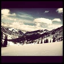 Snowbird Ski And Patio 49 Best Snowbird Ski Resort Utah Usa Arctivity Images On