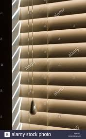 sunlight streaming through venetian blind slats with pull cord