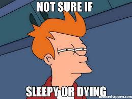 Not Sure Memes - not sure if sleepy or dying meme futurama fry 45445 memeshappen