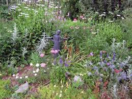 Late Blooming Perennials Keep Flowering Perennials Blooming From Spring Until Fall Dengarden