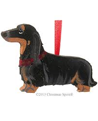 dachshund ornament personalized black longhair dachshund