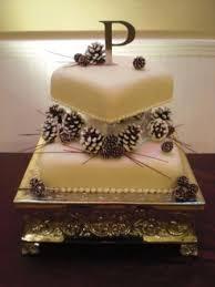 32 best cake ideas images on pinterest cake ideas pine cones
