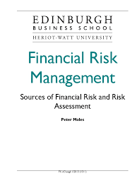 financial risk management exchange rate risk