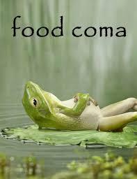 Food Coma Meme - anatomy of a food coma healthfreedoms