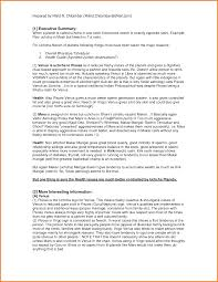 6 executive summary real life examples financial statement form
