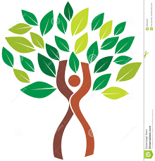 human tree stock vector image 39026362