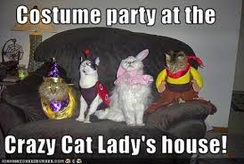 Crazy Lady Meme - crazy cat lady costume party sew funny