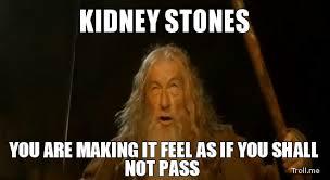 Kidney Stones Meme - kidney stones kidney stones pinterest kidney stones kidney