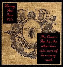 harvey s honey home facebook no automatic alt text available
