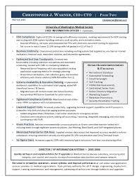 Cto Sample Resume by Sample Cio Resume From Executive Resume Writer U0026 It Resume Writer