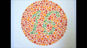 watch photo gallery for website ishihara color test book at