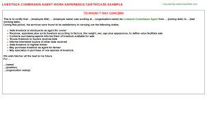 Free Sle Letter Of Employment Certification Livestock Commission Agent Work Experience Certificate
