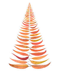 australia australian christmas tree leaves stock images image