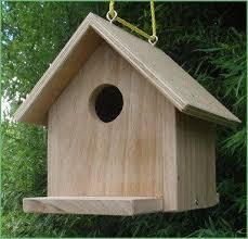 Buy Home Plans Bird House Plans Uk Luxury Pic Buy Bird Table Plans Free Uk New