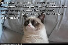 Evil Cat Meme - lolcats evil genius lol at funny cat memes funny cat