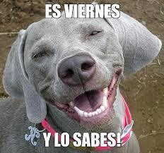 Meme Viernes - los mejores memes d祗a viernes