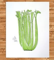 a celery stalk art print celery printing and art prints