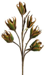 silk plants direct new zealand flax bloom pack of 12