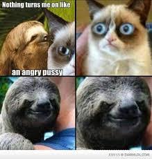 Sloth Meme Pictures - 49 best sloths images on pinterest creepy sloth meme funny memes