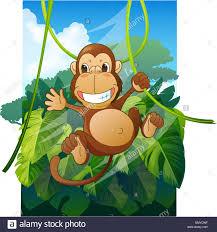 monkey swinging on a vine stock photo royalty free image