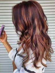 auburn hair with high and low lights hair color