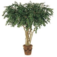 10 foot artificial ficus tree potted gp 10