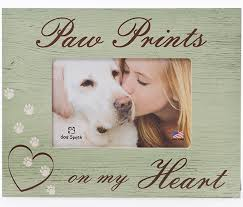sympathy for loss of dog sympathy gift for pet loss frame