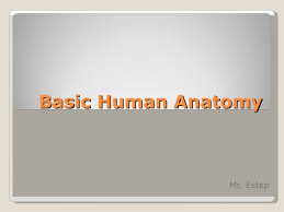 Survey Of Human Anatomy And Physiology Basic Human Anatomy Ppt Powerpoint 1
