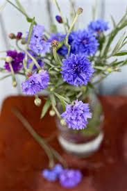 1203 best wedding flowers images on pinterest wedding planning