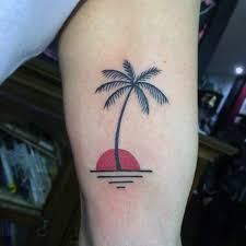 palm tree with sunset on arms for and