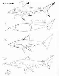 drawing a shark finally easy directions for the boy who loves