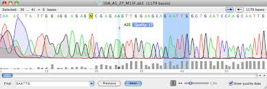 dna mapping snapgene viewer free software for plasmid mapping primer design