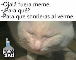 Meme Sad - dopl3r com memes ojal磧 fuera meme ipara qu礬 para que