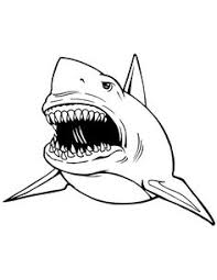 free kids coloring pages u0026 cards white shark kids