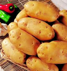 Chinese Root Vegetables - learn chinese flash cards vegetables practical chinese chinese