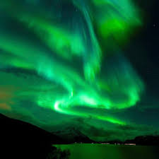 where are the northern lights located arctic bonus the northern light arctic freediving