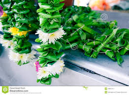 hindu garland flower garland for hindu ceremonies stock photo image 49867417