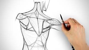 Anatomy Of The Shoulder Girdle How To Draw The Shoulder Bones Youtube