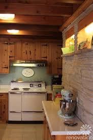 Knotty Pine Kitchen Cabinet Doors 86 Best Cabinet Doors Images On Pinterest Kitchen Armoire