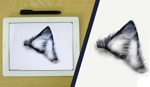 how to draw a fur ear wolf on ipad with paper by fiftythree youtube
